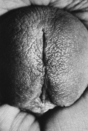 Tony_Ward_photography_early_work_erotica_self_portrait_obsessions_penis_head_71R.jpg