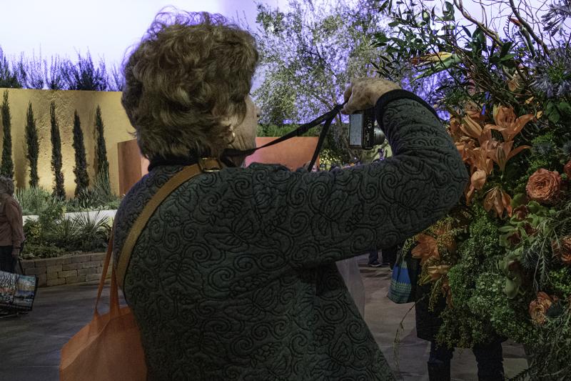 Cindy_Ji_Philadelphia_Flower_show_spring_highlights_photographing_flowers