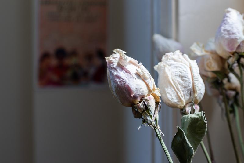 Tina-Captivity-Apartment-Objects-Flower